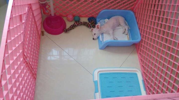 捣蛋鬼猫狗笼子小型犬 可折叠宠物栅栏围栏小狗笼子泰迪比熊用品 粉色 长宽高:100*100*75CM 晒单图