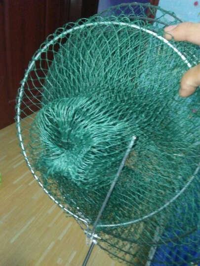 胶丝线鱼护软钢丝折叠鱼篓简易便携渔护鱼兜渔具渔网垂钓用品加长鱼护 5层 晒单图