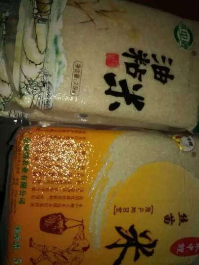 【惠州馆】水中鲤丝苗米油粘米 鸭稻广东大米 长粒香软南方籼米 可溯源 油粘米5kg 晒单图