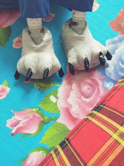 靓稻人珊瑚绒恐龙睡衣爪子鞋子秋冬可爱毛绒居地板保暖拖鞋情侣卡通加大男女EVA软底 土黄色 成人大码39-45 晒单图