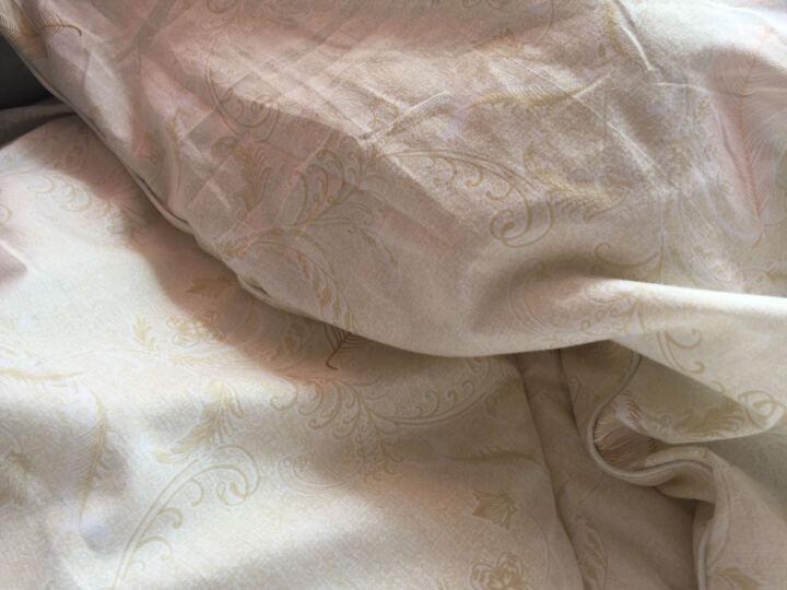 意尔嫚 被子四季被秋冬被加厚保暖春秋被棉被双人秋冬被芯空调被 天使羽翼 200*230cm 6斤 晒单图