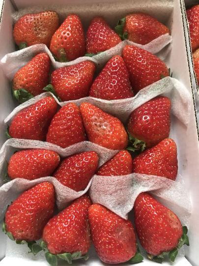 顺丰空运 新鲜草莓 奶油草莓 夏季酸草莓 6盒装(约2400g) 晒单图