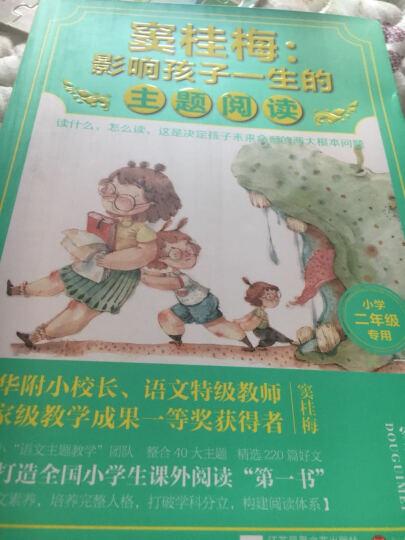 窦桂梅:影响孩子一生的主题阅读(小学二年级专用) 晒单图