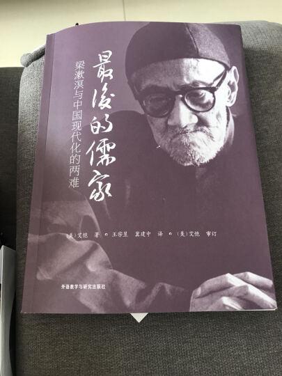 最后的儒家:梁漱溟与中国现代化的两难 晒单图