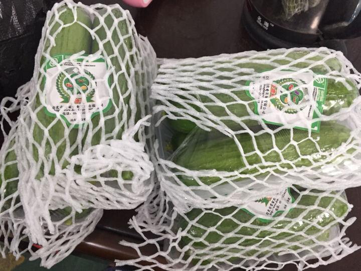 【寿光馆】圣德利小黄瓜小乳瓜水果绿色蔬菜新鲜无公害寿光特产 2500 晒单图