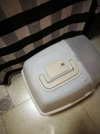 爱丽思大号全封闭猫砂盆猫厕所 带猫砂铲防臭片 橙色 晒单图