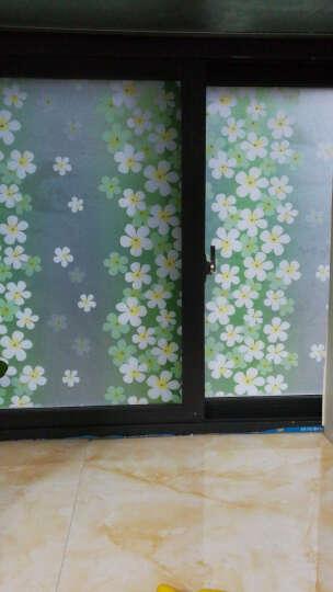 龙红(LH) 60cm窗花纸窗贴磨砂贴纸卫生间透光不透明浴室纸窗户玻璃贴膜墙纸贴纸壁纸 普通纯磨砂60cm宽/2米 晒单图
