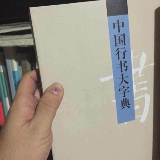 中国行书大字典(平装 插图)行书工具书 行书大全行书字典 晒单图
