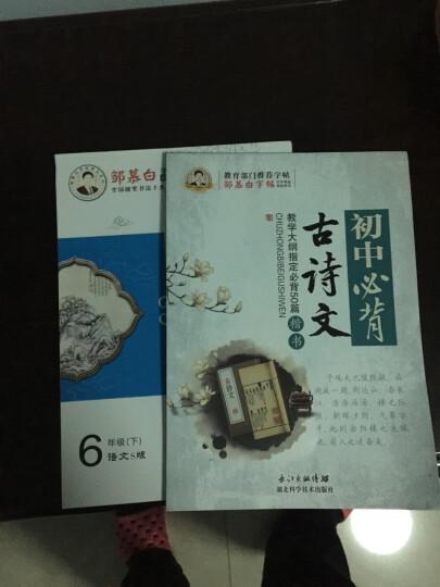 邹慕白字帖精品系列:初中必背古诗文(楷书) 晒单图