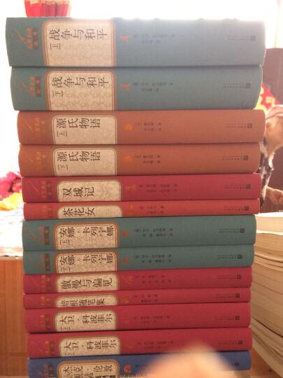战争与和平.全2册(精装)大文豪托尔斯泰 著 世界名著 人民文学出版社正版书籍 晒单图