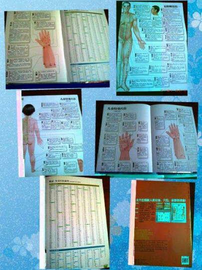 成人 儿童经络穴位使用图册(超大豪华版) 晒单图