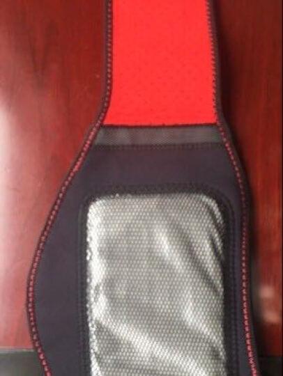 科爱升级版电热保暖护腰带 腰间盘突出男女艾灸肌肉劳损护腰 经典黑 晒单图
