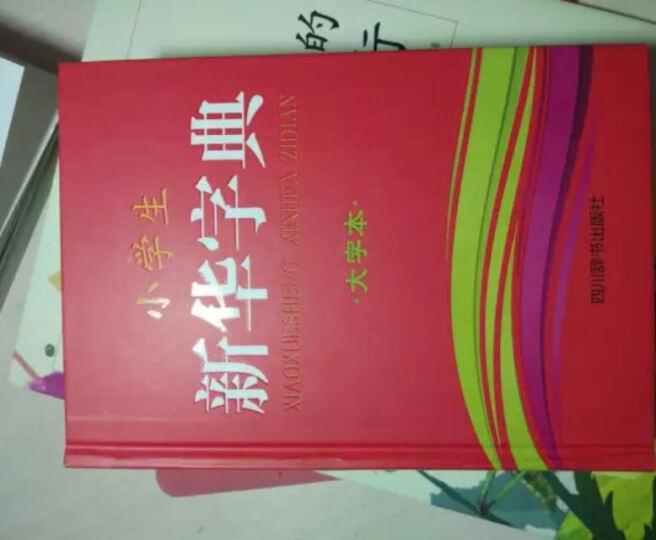 小学生新华字典(大字本) 晒单图