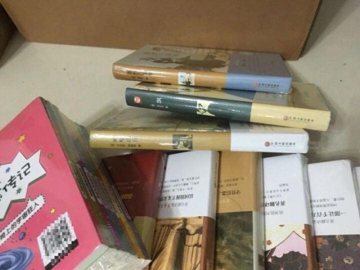 世界十大名著全10册精装 巴黎圣母院 傲慢与偏见中文 简爱 呼啸山庄红与黑童年在人间我的大学 飘复活 晒单图