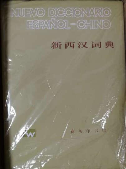 新西汉词典 晒单图