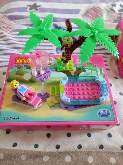 积高(COGO)梦幻女孩积木 女孩益智立体拼插玩具八合一公主城堡(17种造型) 13014粉色 晒单图