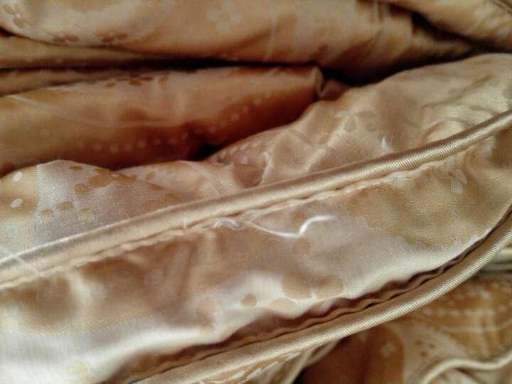 鸿润家纺 羽绒被床上用品95%白鹅绒冬季保暖双人冬被羽绒被被芯 粉色冬款 220x240cm 晒单图