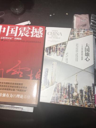 大国雄心+中国震撼 一个文明型国家的崛起(套装2册) 晒单图