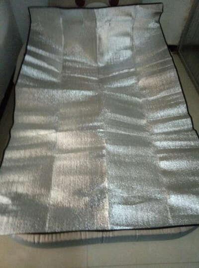 佳嘉优充气床龙猫床气垫床家用便携式榻榻米床空气床可爱小熊床垫卧室地铺 灰色 长2.3米*宽1.5米 晒单图