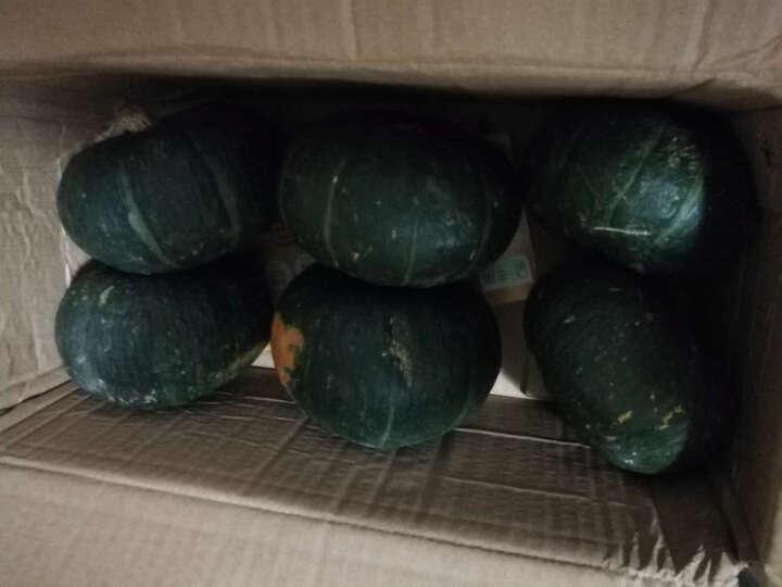 【临朐农特产馆】贝贝小南瓜 迷你嫩青南瓜板栗味窝瓜新鲜蔬菜 10kg 晒单图