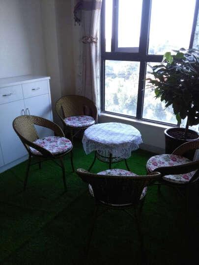 PGM 仿真草坪 绿植地毯 人造绿色假草皮 塑料草地毯 幼儿园户外室内阳台装饰 楼顶隔热 L008-20MM三色草 晒单图