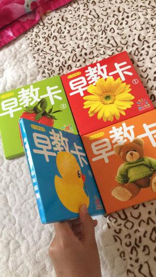 阳光宝贝 0-3岁宝宝早教卡(套装全4册) 晒单图