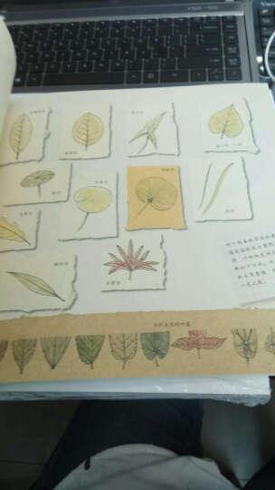 法国水彩教程 水彩笔下的植物花园 晒单图