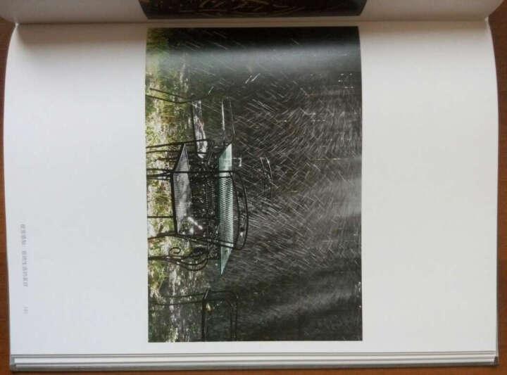 摄影中的美:摄影与眼睛、思想和心灵的表达(全彩) 晒单图