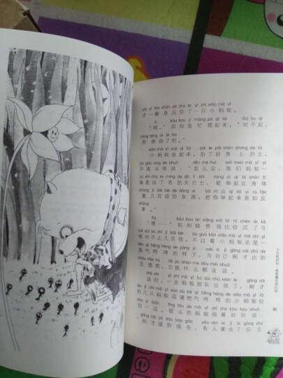 方方蛋原创儿童文学馆:萤火虫的夜晚 晒单图