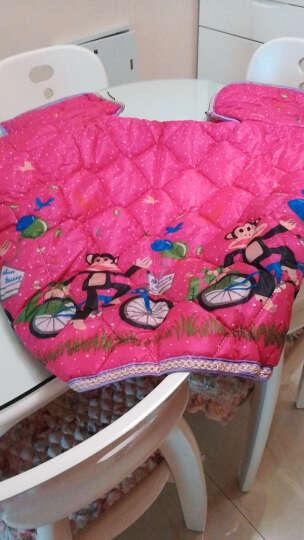 恺亨 KHENG自行车电动车挡风被冬季电摩踏板车防雨防风加厚保暖被骑行装备 加厚双面防水-紫 晒单图
