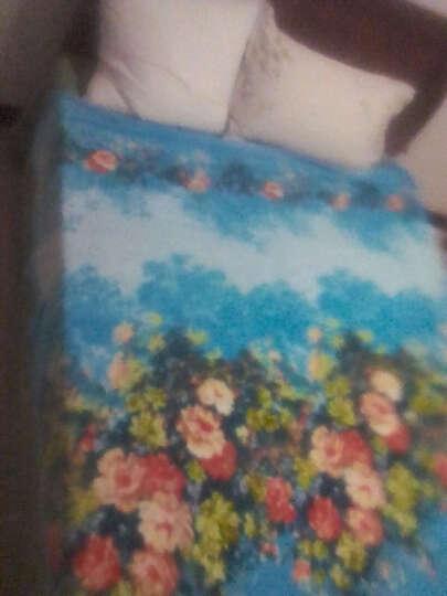 紫嫣蕊家纺 毛毯加厚雪貂绒毯子床单夏季午睡空调毯毛巾被法兰绒盖毯 KT猫 2.0*2.3m 晒单图