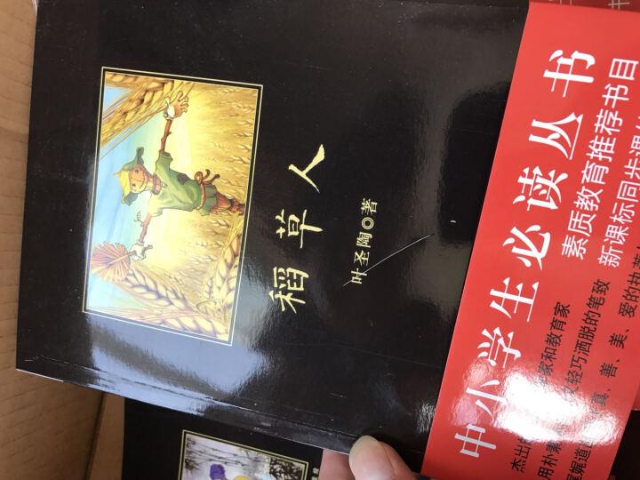 黑皮系列课外阅读:变色龙 七年级下册阅读 晒单图