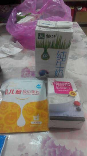 川秀 胶原蛋白酸奶发酵剂发酵菌 胶原蛋白益生菌发酵粉 酸奶粉 25g 晒单图