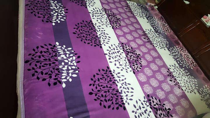 美宜美 毛毯珊瑚绒加厚单层毯子无静电不掉毛 发财树 150*200 晒单图