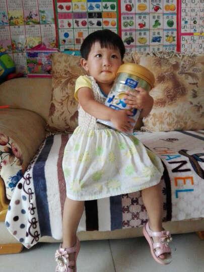 时健(si-ki) 蛋白质粉高钙营养蛋白粉中老年儿童成长钙铁锌牛初乳多维氨基酸低糖 牛初乳蛋白粉1000g 晒单图