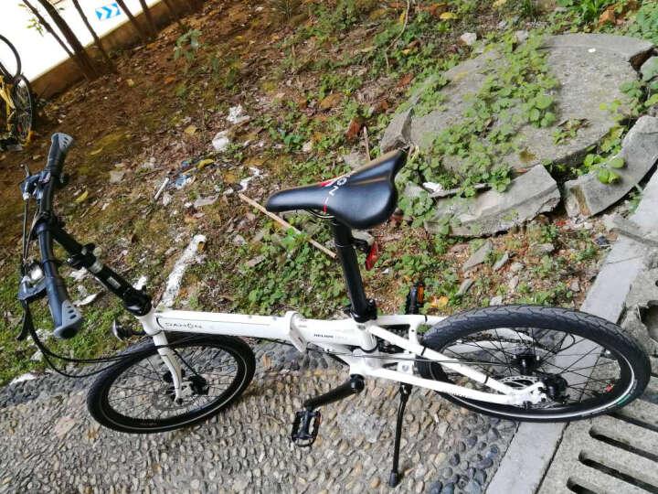 大行(DAHON) 折叠自行车P8碟刹款20寸8速成人男女铝合金单车D8 KBA083 丽面黑 晒单图