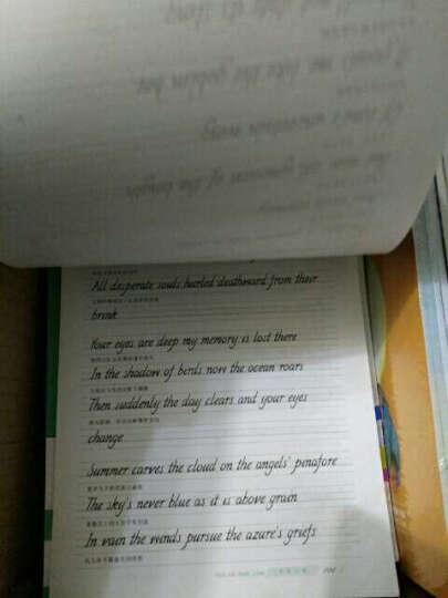 墨点字帖:英文书写360° 高中必背单词(英语钢笔书法字帖) 晒单图