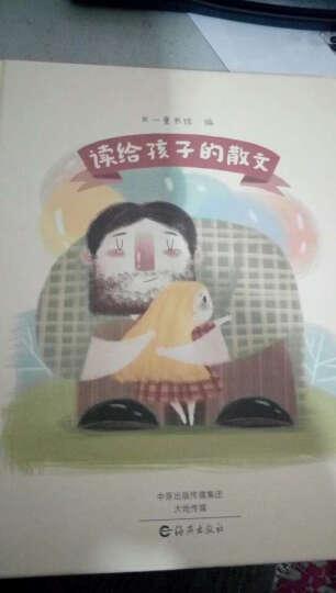 2019年寒假三年级推荐读物【共7册】时光邮差(童话)+故事堆里长出数学啦(三)+中国传统节日 儿童文学 晒单图