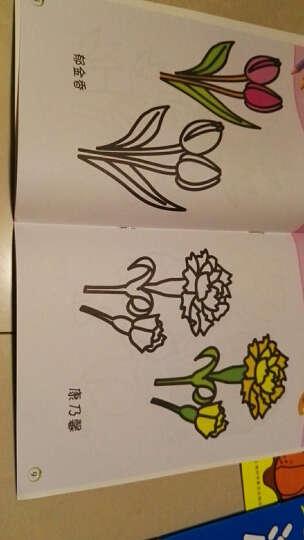 赠1盒蜡笔】涂色书画画本儿童3-6岁绘画本2套任选共20册美术涂鸦本宝宝填色益智图书幼儿左右脑思维游 宝宝涂色(8册装) 晒单图