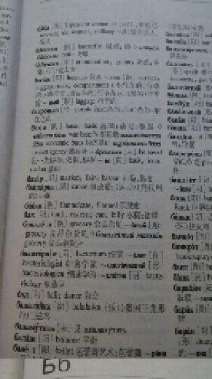 俄英汉三语词典 晒单图