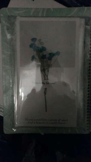 创意贺卡干花教师节贺卡答谢卡情人节通用祝福贺卡生日卡片 蓝色满天星 晒单图