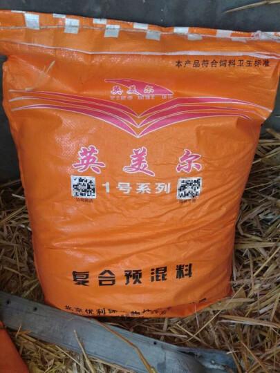 英美尔(YINGMEIER) 英美尔 牛饲料预混料肉牛育肥期肉牛添加剂快速催肥增重牛上膘 又省又快 1袋 晒单图