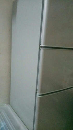 雪花 (SNOWFLK)迷你 小冰箱 家用时尚三门三温冰箱 日耗电0.61度  闪白银 120升三门三温电冰箱 晒单图