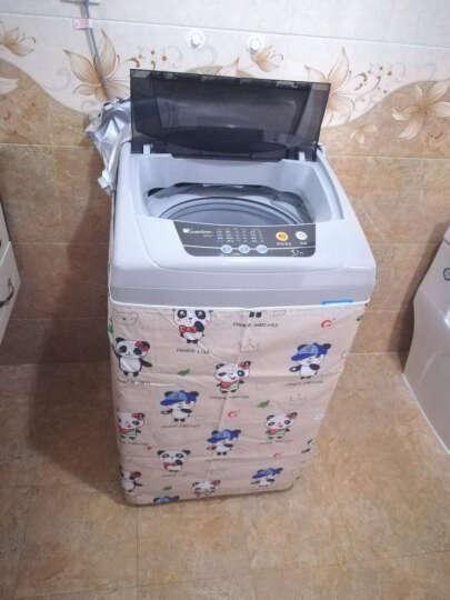 小天鹅(LittleSwan)5.5公斤 全自动波轮洗衣机(灰色)TB55V20 晒单图
