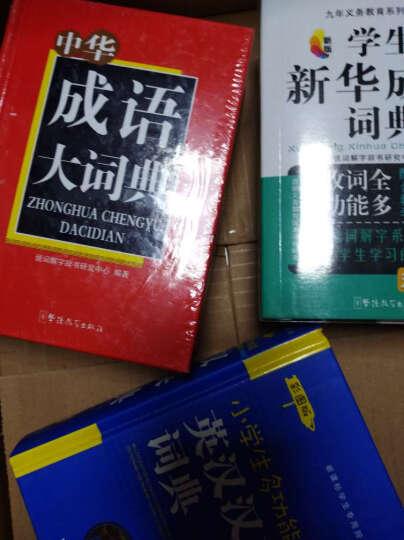 中华成语大词典 晒单图