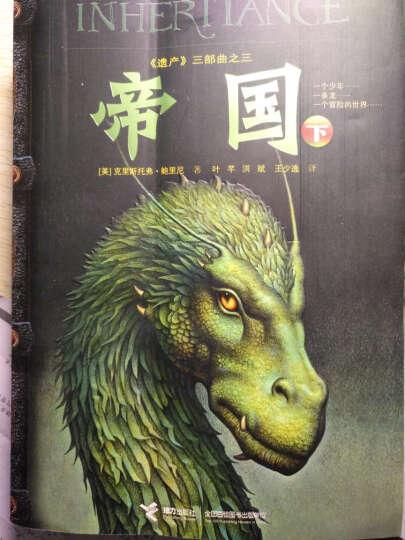 遗产三部曲珍藏版伊拉龙长老帝国(上下)全4本儿童文学  [7-15岁] 晒单图