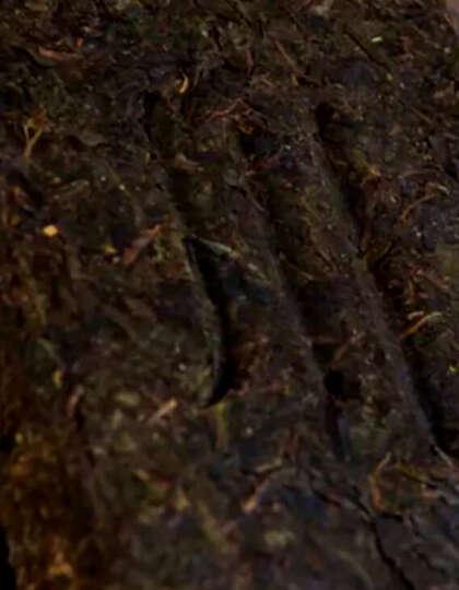 湖北黑茶赵李桥川字牌砖茶2000g老字号壹号凸版 茯砖 青砖茶叶 晒单图