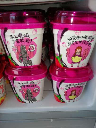 伊利 大果粒 风味发酵乳 芒果+黄桃酸奶酸牛奶 260g*1(2件起售) 晒单图