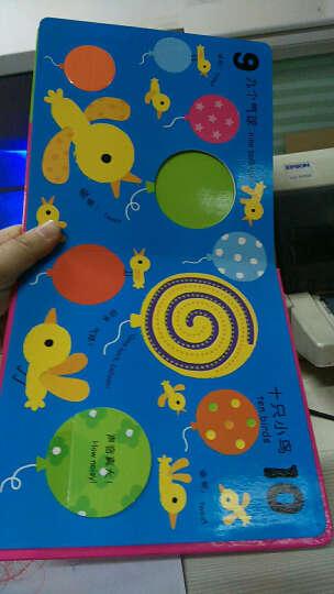 我的第一本触摸翻翻玩具书 数字 中英文双语 0-3岁宝宝趣味启蒙认知亲子洞洞游戏书儿童书籍 晒单图