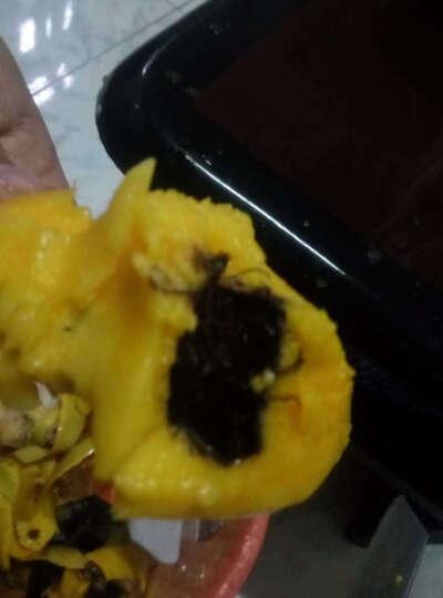 金玉寿 海南大青芒果2.5kg 单果约400-800g 新鲜水果 晒单图